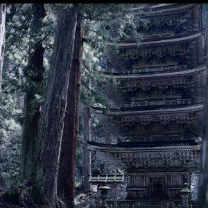 【制作事例】動画:羽黒五重塔イメージ