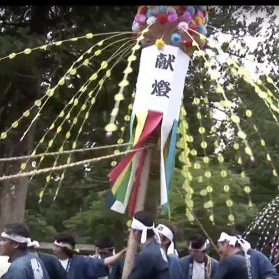 【制作事例】動画:花祭りイメージ